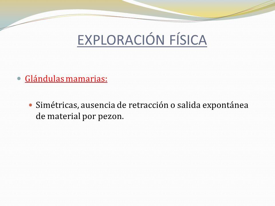 Glándulas mamarias: Simétricas, ausencia de retracción o salida expontánea de material por pezon. EXPLORACIÓN FÍSICA