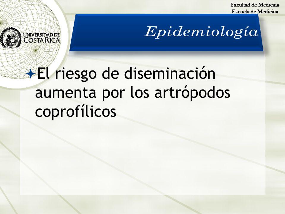 Facultad de Medicina Escuela de Medicina El riesgo de diseminación aumenta por los artrópodos coprofílicos
