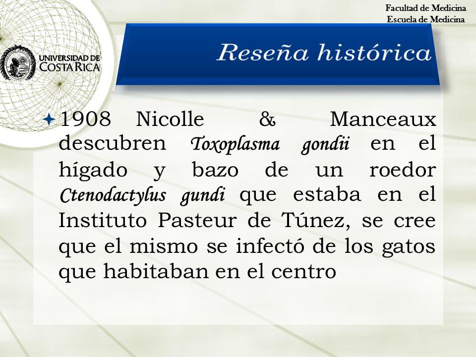 1908Nicolle & Manceaux descubren Toxoplasma gondii en el hígado y bazo de un roedor Ctenodactylus gundi que estaba en el Instituto Pasteur de Túnez, s