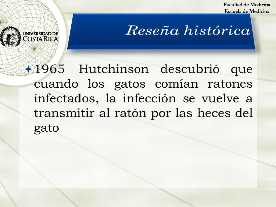 1965Hutchinson descubrió que cuando los gatos comían ratones infectados, la infección se vuelve a transmitir al ratón por las heces del gato Facultad