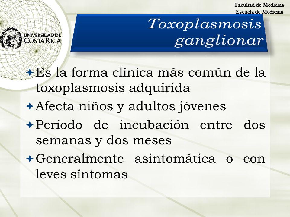 Es la forma clínica más común de la toxoplasmosis adquirida Afecta niños y adultos jóvenes Período de incubación entre dos semanas y dos meses General