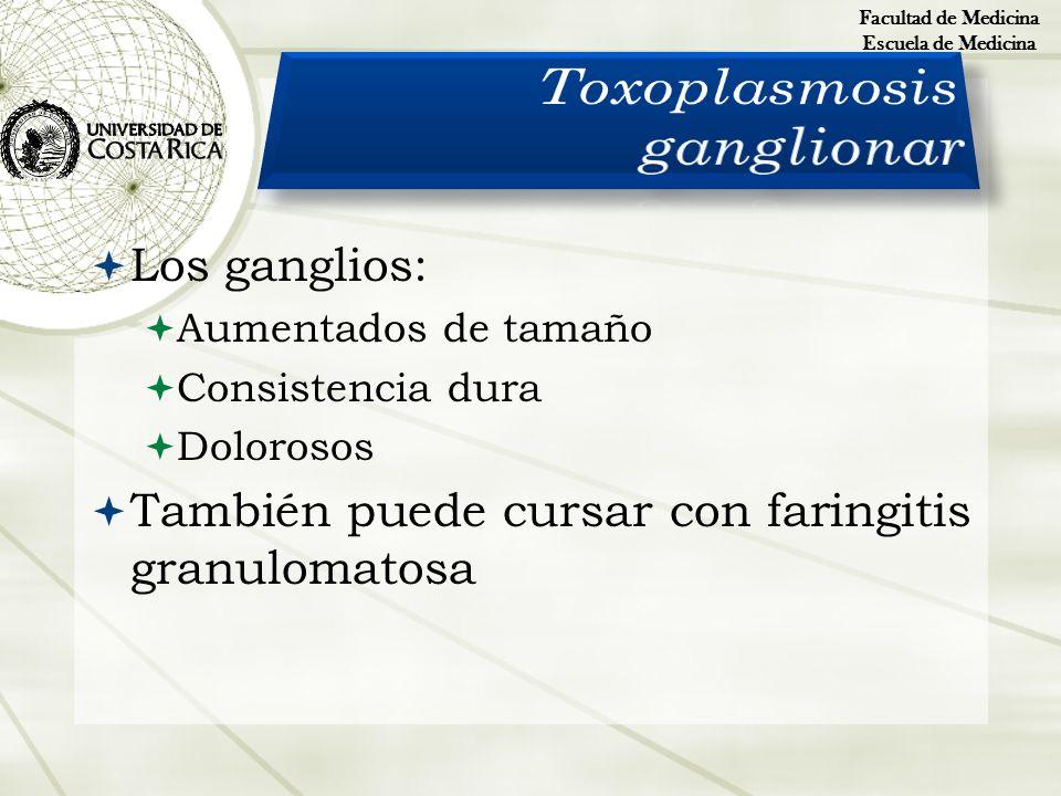 Los ganglios: Aumentados de tamaño Consistencia dura Dolorosos También puede cursar con faringitis granulomatosa Facultad de Medicina Escuela de Medic