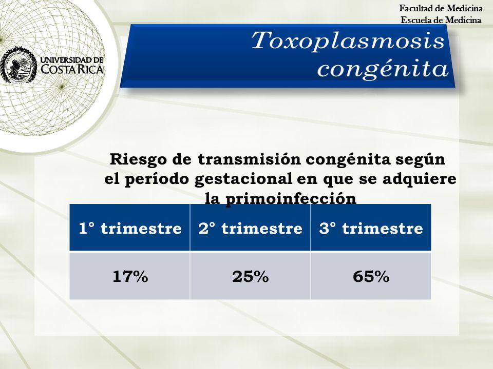 Facultad de Medicina Escuela de Medicina 1° trimestre2° trimestre3° trimestre 17%25%65% Riesgo de transmisión congénita según el período gestacional e