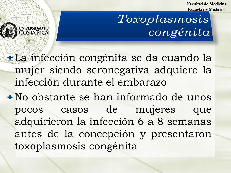 La infección congénita se da cuando la mujer siendo seronegativa adquiere la infección durante el embarazo No obstante se han informado de unos pocos