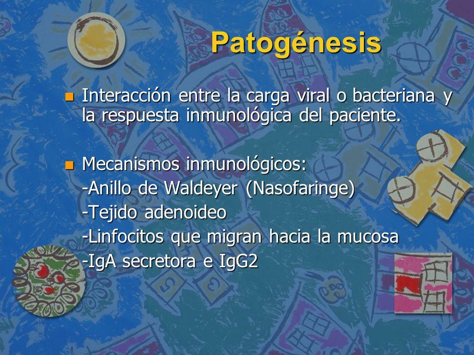 Patogénesis n Interacción entre la carga viral o bacteriana y la respuesta inmunológica del paciente. n Mecanismos inmunológicos: -Anillo de Waldeyer