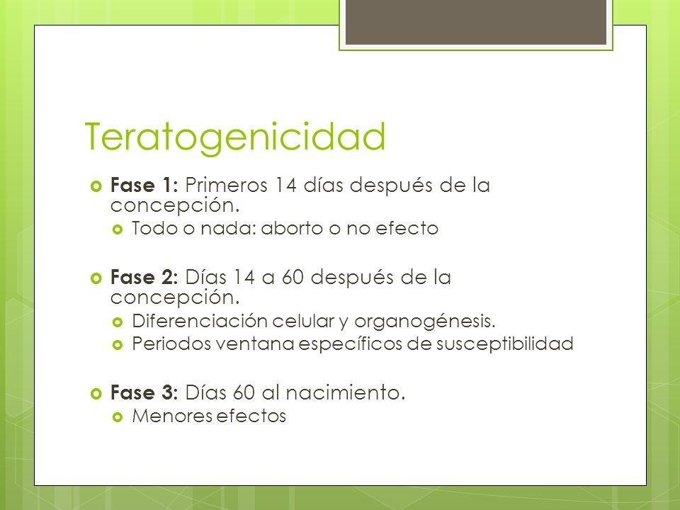 Teratogenicidad Fase 1: Primeros 14 días después de la concepción. Todo o nada: aborto o no efecto Fase 2: Días 14 a 60 después de la concepción. Dife