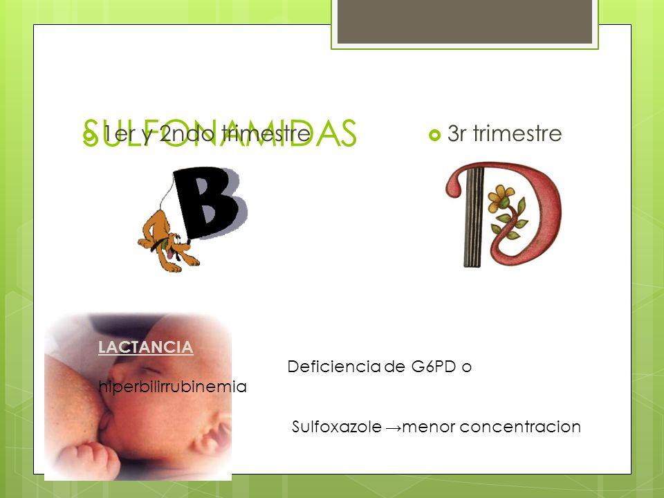 SULFONAMIDAS 1er y 2ndo trimestre 3r trimestre LACTANCIA Deficiencia de G6PD o hiperbilirrubinemia Sulfoxazole menor concentracion