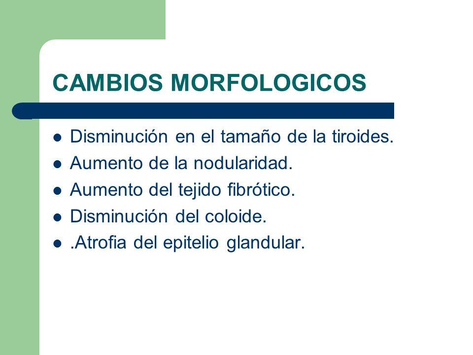 CAMBIOS EN LOS NIVELES HORMONALES T4 disminuye producción.
