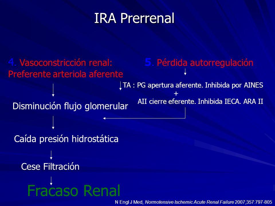 IRA Prerrenal 4. Vasoconstricción renal: Preferente arteriola aferente Disminución flujo glomerular Caída presión hidrostática Cese Filtración Fracaso