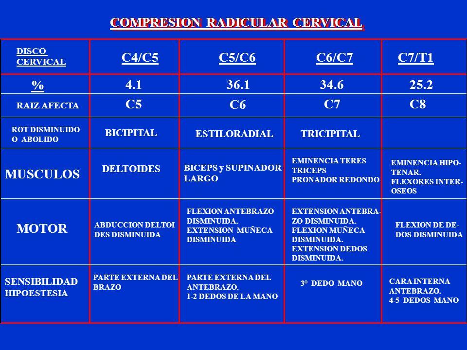 COMPRESION RADICULAR CERVICAL DISCO CERVICAL C4/C5C5/C6C6/C7C7/T1 % 4.136.134.625.2 RAIZ AFECTA C5 C6 C7C8 ROT DISMINUIDO O ABOLIDO BICIPITAL ESTILORA