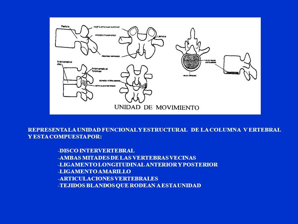 REPRESENTA LA UNIDAD FUNCIONAL Y ESTRUCTURAL DE LA COLUMNA V ERTEBRAL Y ESTA COMPUESTA POR: -DISCO INTERVERTEBRAL -AMBAS MITADES DE LAS VERTEBRAS VECI