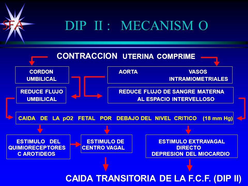 SFA DIP II : MECANISM O CONTRACCION UTERINA COMPRIME REDUCE FLUJO REDUCE FLUJO DE SANGRE MATERNA UMBILICAL AL ESPACIO INTERVELLOSO CORDON AORTA VASOS