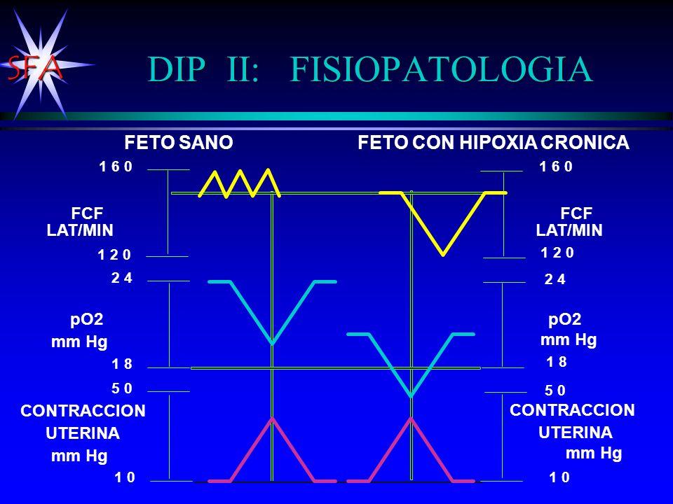 SFA DIP II: FISIOPATOLOGIA FCF LAT/MIN pO2 FCF LAT/MIN pO2 mm Hg FETO SANOFETO CON HIPOXIA CRONICA 1 2 0 1 6 0 2 4 1 8 5 0 1 0 1 6 0 1 2 0 2 4 1 8 5 0