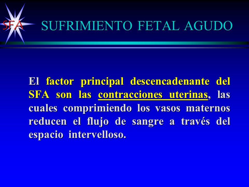 SFA INTERCAMBIO FETO-MATERNO Trabajo Parto Normal l La intensidad de las contracciones varían entre 25-55 mm Hg.