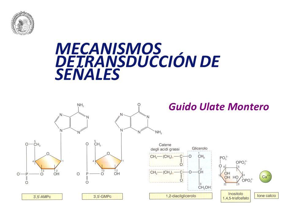 Eléctrica: potenciales graduados y potenciales de acción Química: mensajeros químicos (MQ): hormonas y neurotransmisores.