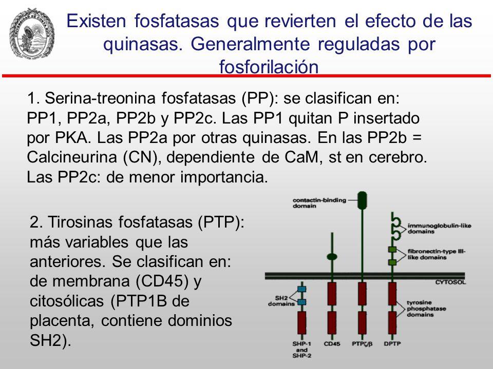 Libro de texto. pag. 96 Activación transcripcional por los receptores intracelulares