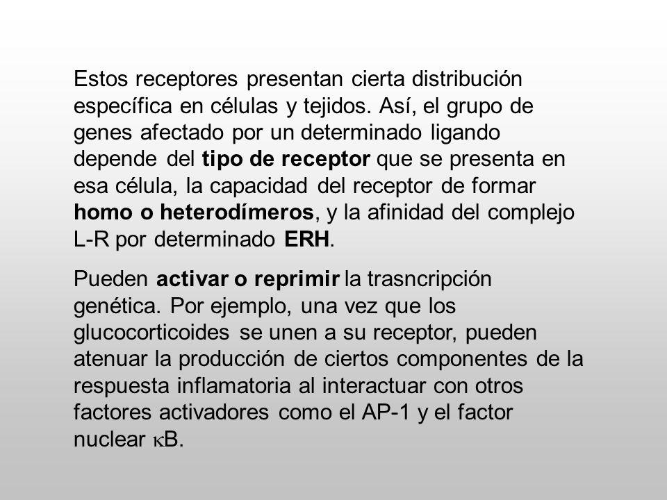 Annu. Rev. Physiol. 2008, 70: 165-90