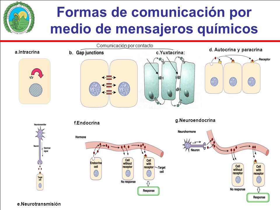 Los receptores para los mensajeros químicos idealmente deben cumplir con los siguientes 4 criterios para que sean aceptados como tales: 1.La proteína que los constituye debe estar secuenciada 2.