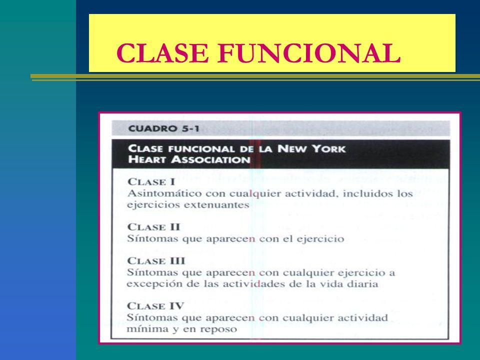 CLASE FUNCIONAL