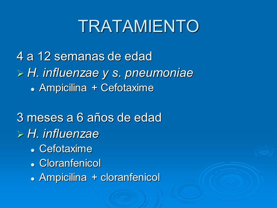 TRATAMIENTO 4 a 12 semanas de edad H. influenzae y s. pneumoniae H. influenzae y s. pneumoniae Ampicilina + Cefotaxime Ampicilina + Cefotaxime 3 meses