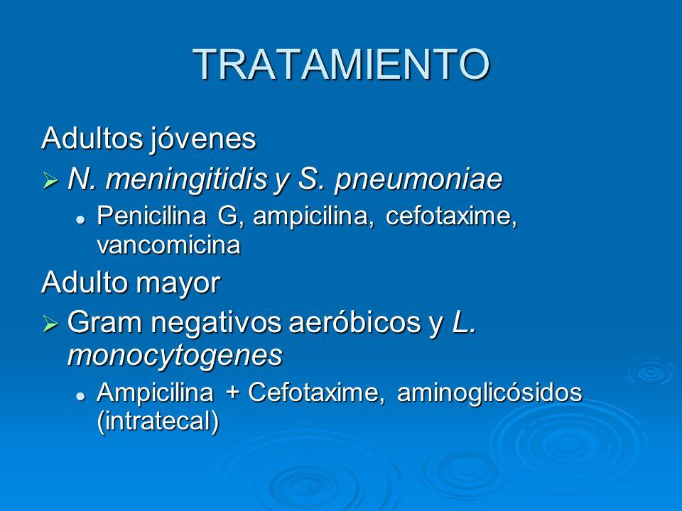 TRATAMIENTO Adultos jóvenes N. meningitidis y S. pneumoniae N. meningitidis y S. pneumoniae Penicilina G, ampicilina, cefotaxime, vancomicina Penicili