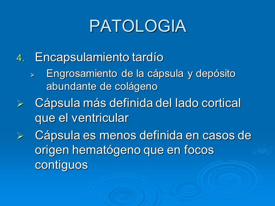 PATOLOGIA 4. Encapsulamiento tardío Engrosamiento de la cápsula y depósito abundante de colágeno Engrosamiento de la cápsula y depósito abundante de c
