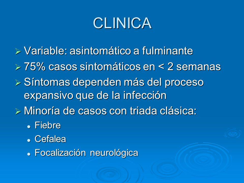 CLINICA Variable: asintomático a fulminante Variable: asintomático a fulminante 75% casos sintomáticos en < 2 semanas 75% casos sintomáticos en < 2 se