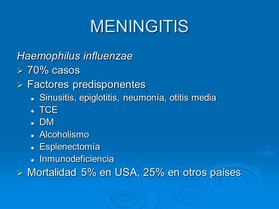 MENINGITIS Haemophilus influenzae 70% casos 70% casos Factores predisponentes Factores predisponentes Sinusitis, epiglotitis, neumonía, otitis media S