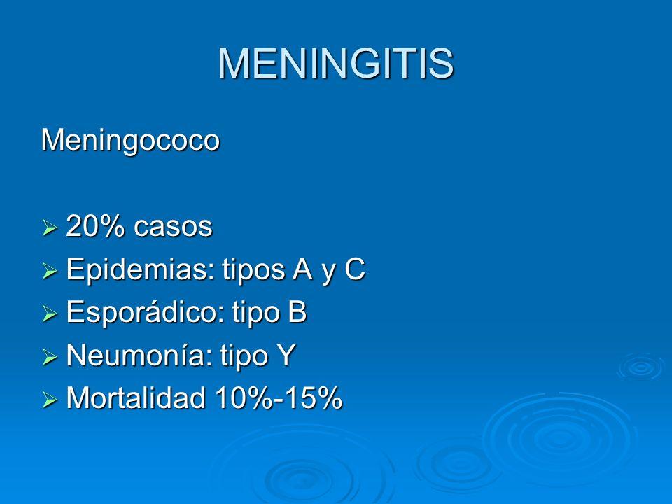 MENINGITIS Meningococo 20% casos 20% casos Epidemias: tipos A y C Epidemias: tipos A y C Esporádico: tipo B Esporádico: tipo B Neumonía: tipo Y Neumon