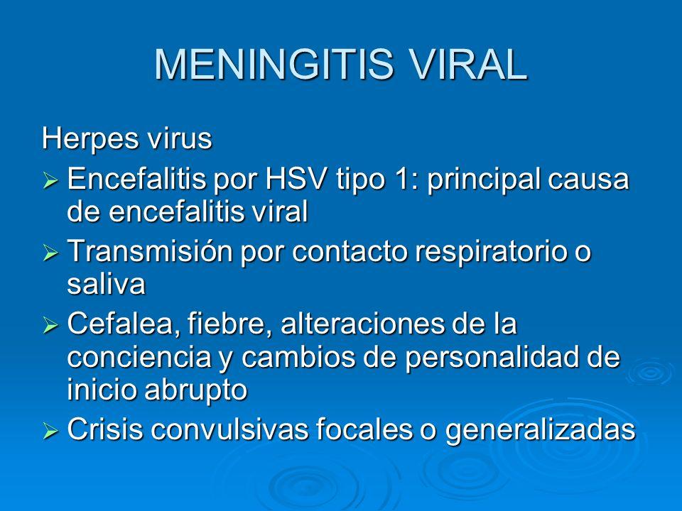 MENINGITIS VIRAL Herpes virus Encefalitis por HSV tipo 1: principal causa de encefalitis viral Encefalitis por HSV tipo 1: principal causa de encefali