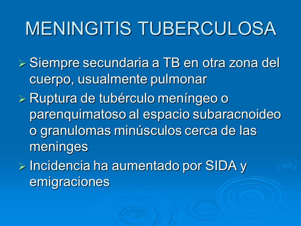 MENINGITIS TUBERCULOSA Siempre secundaria a TB en otra zona del cuerpo, usualmente pulmonar Siempre secundaria a TB en otra zona del cuerpo, usualment