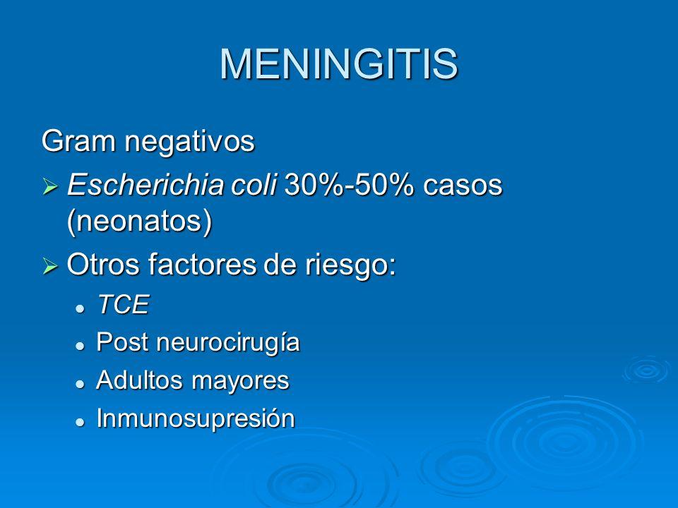 MENINGITIS Gram negativos Escherichia coli 30%-50% casos (neonatos) Escherichia coli 30%-50% casos (neonatos) Otros factores de riesgo: Otros factores