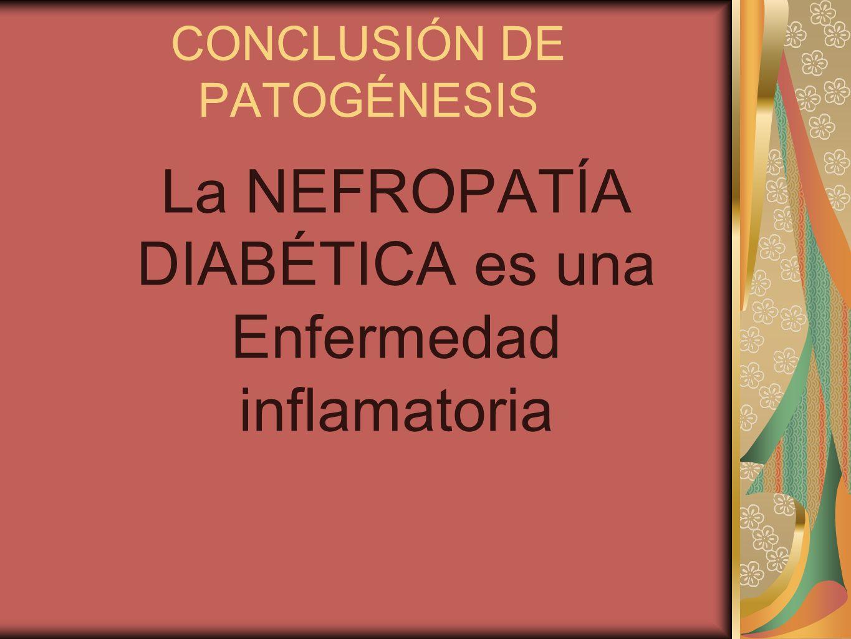 CONCLUSIÓN DE PATOGÉNESIS La NEFROPATÍA DIABÉTICA es una Enfermedad inflamatoria