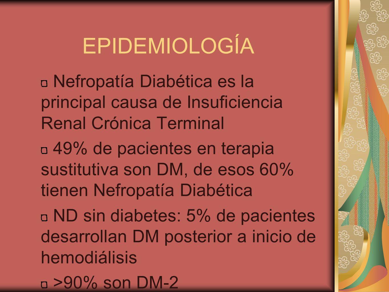 EPIDEMIOLOGÍA Nefropatía Diabética es la principal causa de Insuficiencia Renal Crónica Terminal 49% de pacientes en terapia sustitutiva son DM, de es