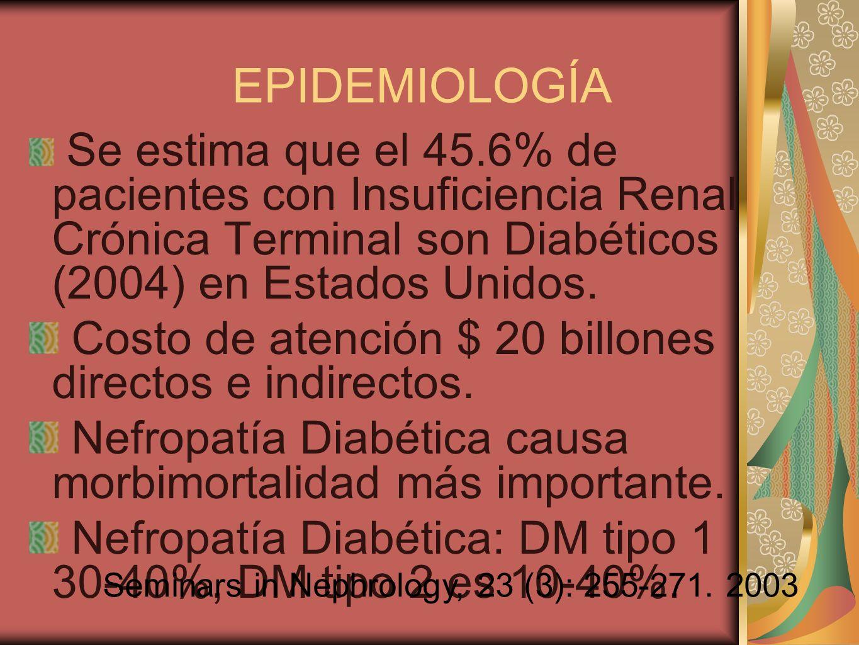 EPIDEMIOLOGÍA Se estima que el 45.6% de pacientes con Insuficiencia Renal Crónica Terminal son Diabéticos (2004) en Estados Unidos. Costo de atención
