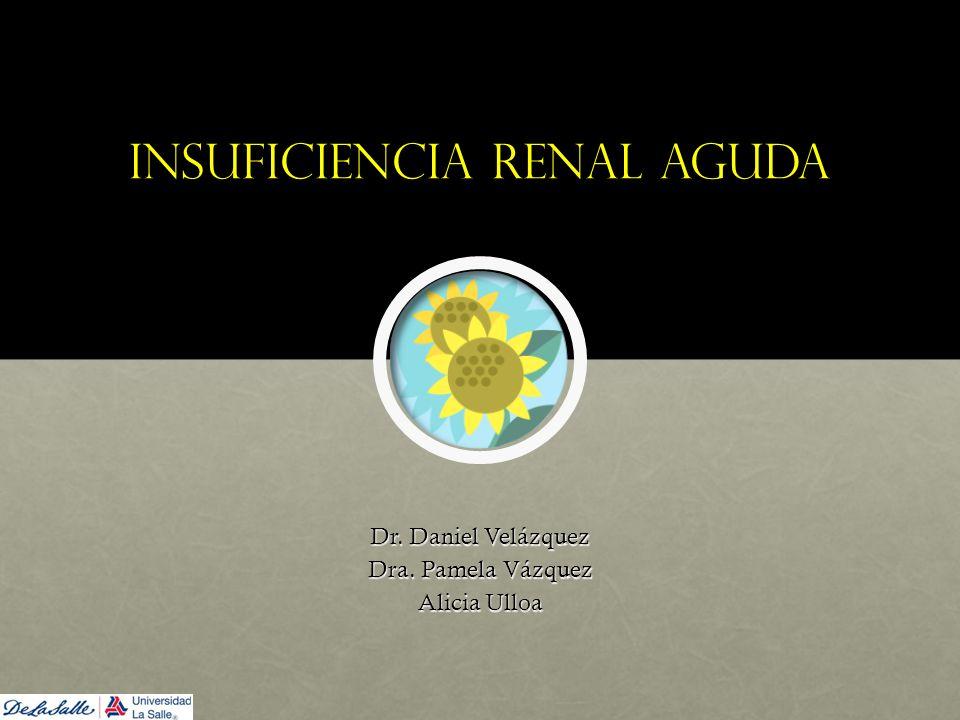 Insuficiencia renal aguda Dr. Daniel Velázquez Dra. Pamela Vázquez Alicia Ulloa