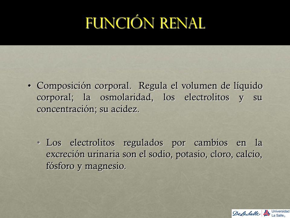 Función renal Composición corporal. Regula el volumen de líquido corporal; la osmolaridad, los electrolitos y su concentración; su acidez.Composición
