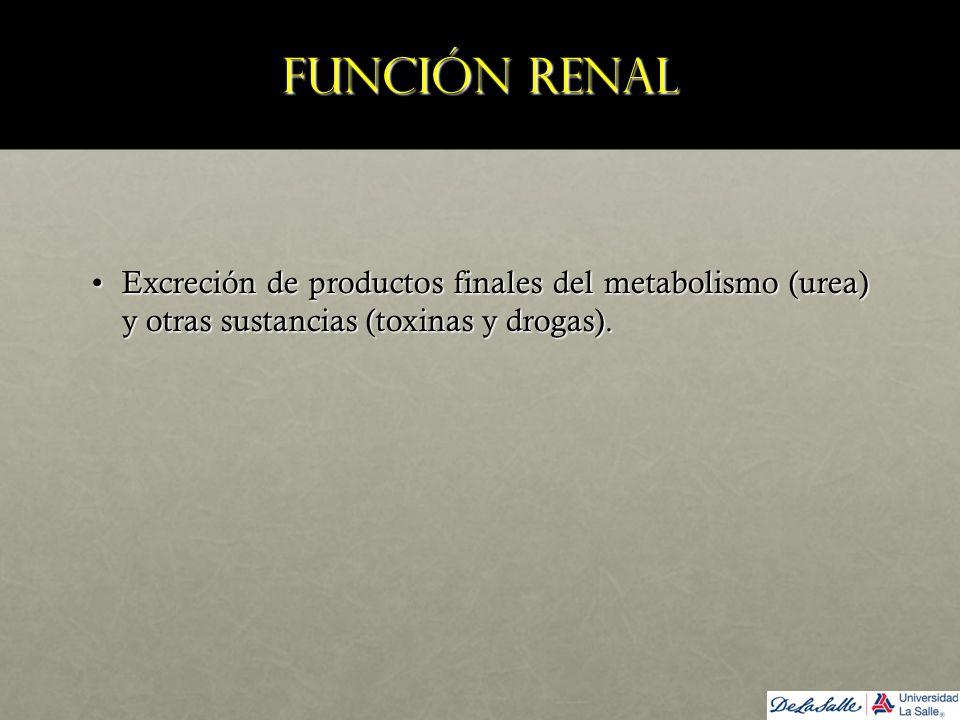 Función renal Excreción de productos finales del metabolismo (urea) y otras sustancias (toxinas y drogas).Excreción de productos finales del metabolis