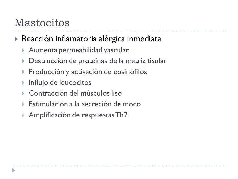 Ejemplos Enfermedad del Suero Por inyección de cantidades elevadas de un antígeno soluble Clínica Escalofríos, fiebre, brote cutáneo, urticaria, artritis, glomerulonefritis Inicia 7-10 días posterior a exposición al antígeno, cuando se generan anticuerpos y complejos inmunes Efectos son transitorios