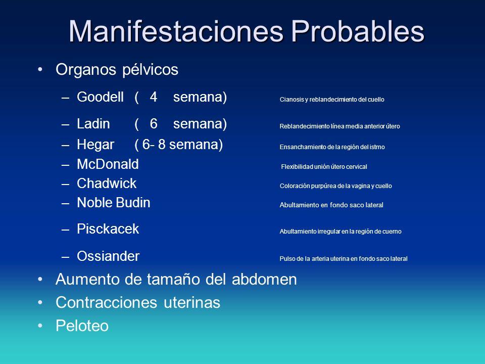 Manifestaciones Probables Organos pélvicos –Goodell ( 4 semana) Cianosis y reblandecimiento del cuello –Ladin ( 6 semana) Reblandecimiento línea media
