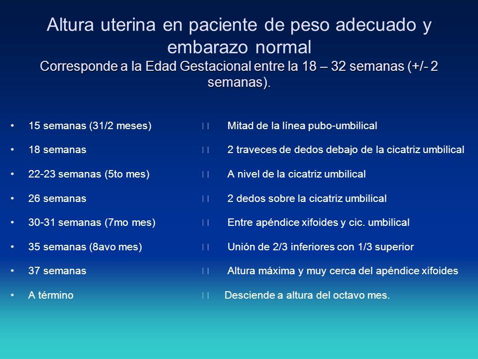 Corresponde a la Edad Gestacional entre la 18 – 32 semanas (+/- 2 semanas). Altura uterina en paciente de peso adecuado y embarazo normal Corresponde