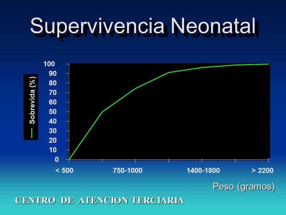 Supervivencia Neonatal 0 10 20 30 40 50 60 70 80 90 100 < 500750-10001400-1800> 2200 Sobrevida (%) CENTRO DE ATENCION TERCIARIA Peso (gramos)