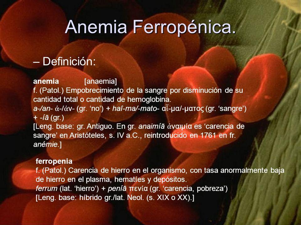 –Definición: anemia [anaemia] f. (Patol.) Empobrecimiento de la sangre por disminución de su cantidad total o cantidad de hemoglobina. a /an / ν (gr.