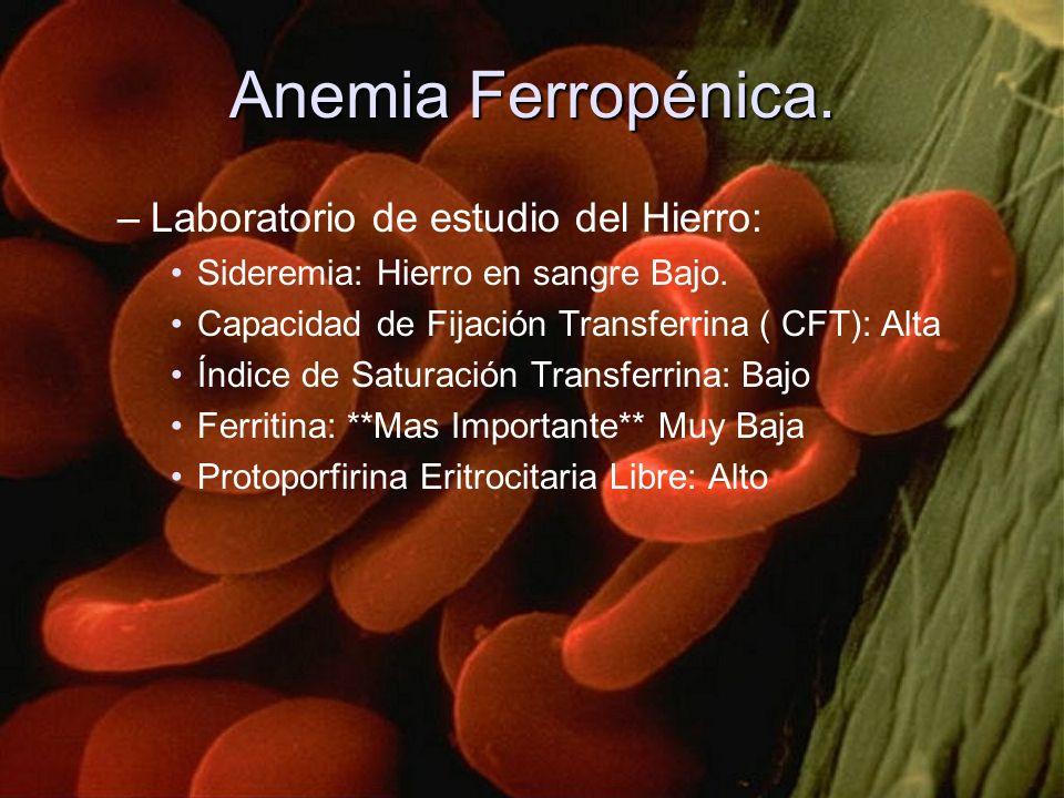 Anemia Ferropénica. –Laboratorio de estudio del Hierro: Sideremia: Hierro en sangre Bajo. Capacidad de Fijación Transferrina ( CFT): Alta Índice de Sa