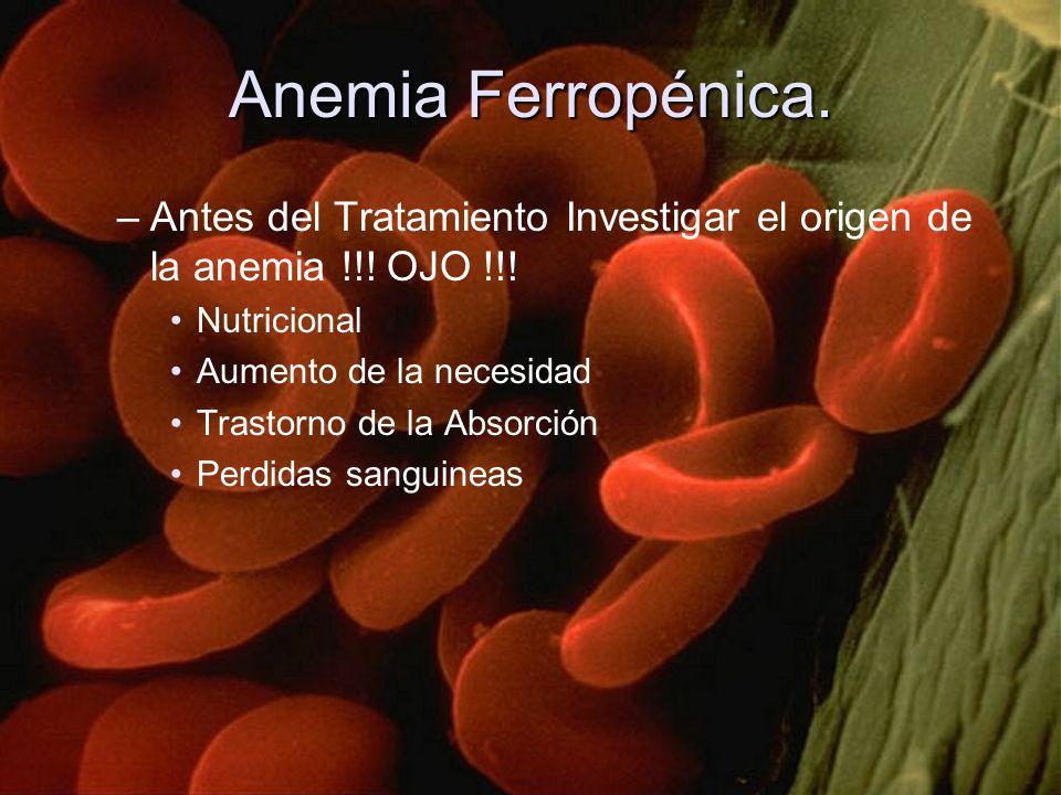 Anemia Ferropénica. –Antes del Tratamiento Investigar el origen de la anemia !!! OJO !!! Nutricional Aumento de la necesidad Trastorno de la Absorción