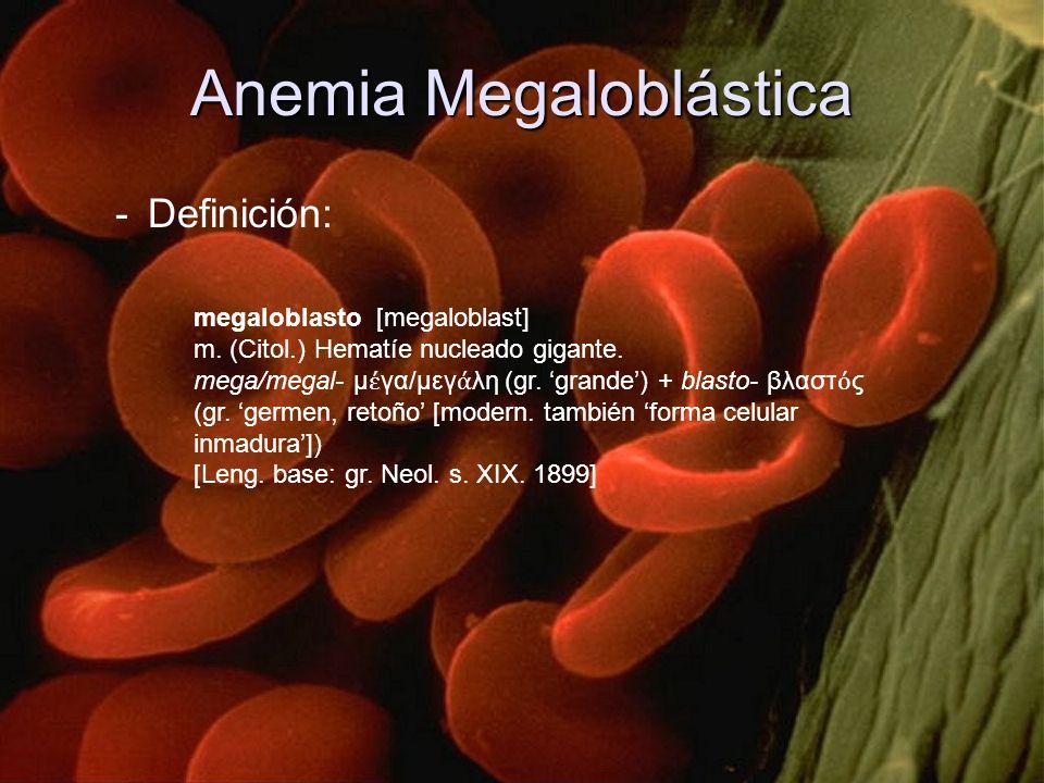 -Definición: megaloblasto [megaloblast] m. (Citol.) Hematíe nucleado gigante. mega/megal μ γα/μεγ λη (gr. grande) + blasto βλαστ ς (gr. germen, retoño