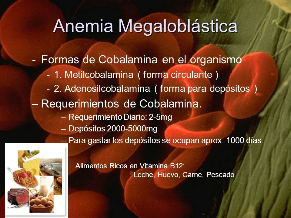 Anemia Megaloblástica -Formas de Cobalamina en el organismo -1. Metilcobalamina ( forma circulante ) -2. Adenosilcobalamina ( forma para depósitos ) –