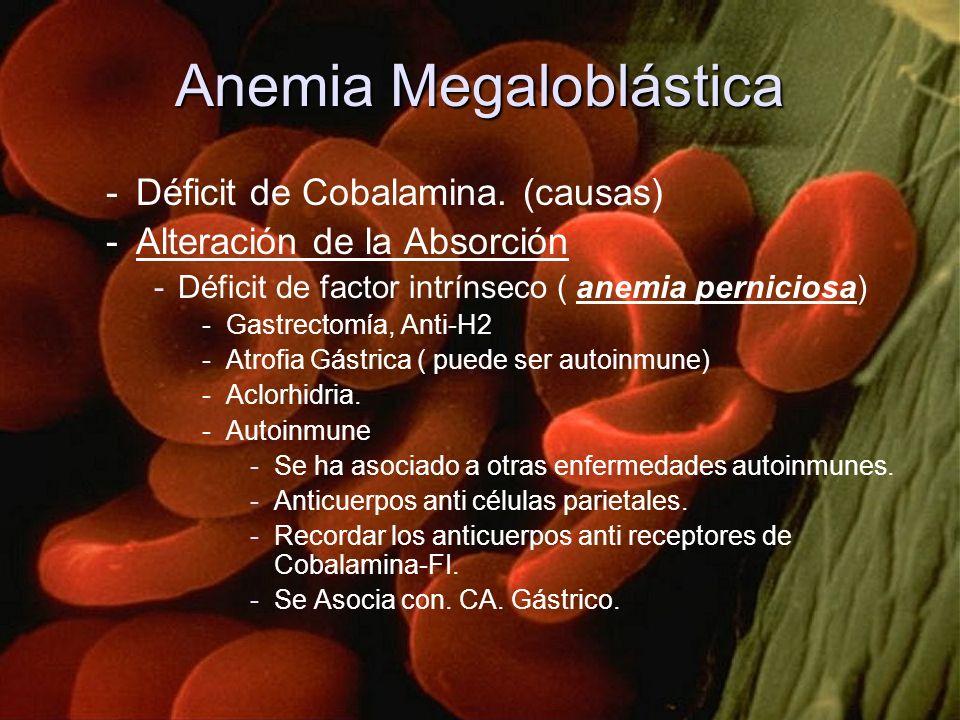 Anemia Megaloblástica -Déficit de Cobalamina. (causas) -Alteración de la Absorción -Déficit de factor intrínseco ( anemia perniciosa) -Gastrectomía, A