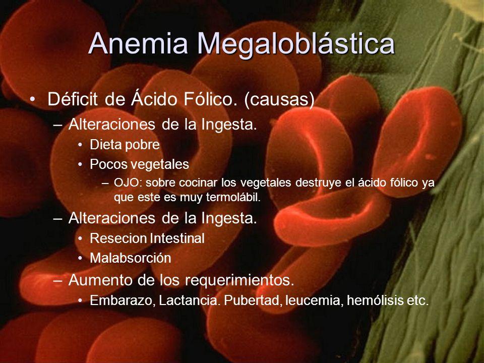 Anemia Megaloblástica Déficit de Ácido Fólico. (causas) –Alteraciones de la Ingesta. Dieta pobre Pocos vegetales –OJO: sobre cocinar los vegetales des