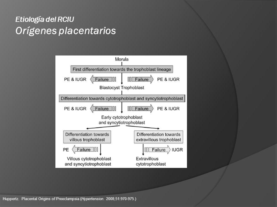 Etiología del RCIU Orígenes placentarios Huppertz. Placental Origins of Preeclampsia (Hypertension. 2008;51:970-975.)